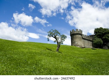 An olive tree on a green field with medieaval castle in background.