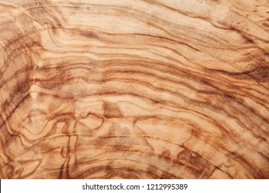 Olive wood texture. High detailed natural background.