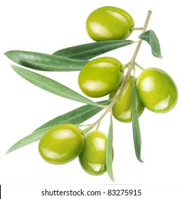 Olives on branch with olive leaves isolated on white. File contains clipping path.