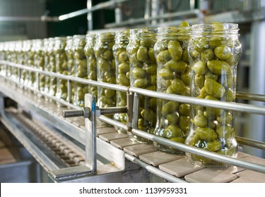 Olives in packaging line.