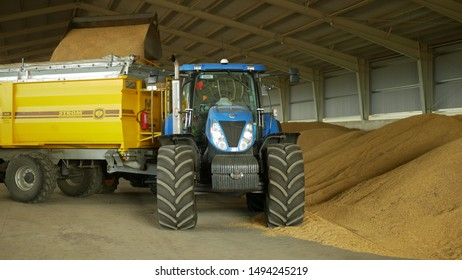 OLOMOUC, CZECH REPUBLIC, AUGUST 20, 2019: Stock or warehouse pile wheat or barley store, tractor New Holland T 7060 and siding train Bednar loading, sprinkling and pouring