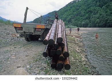 OLT, TRANSYLVANIA, ROMANIA - JUNE 18: rafter on Olt river load logs on truck on June 18, 2000 in Olt, Transylvania, Romania. Rafting logs was traditional way of transport logs.