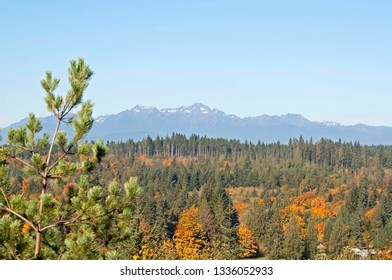 The Olympic Mountains in the fall, photographed from an overlook near Shelton, WA, USA.