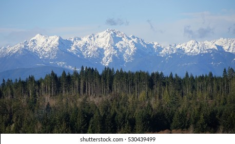 Olympic Mountains w/snow