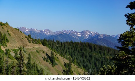 Olympic National Park snow-capped mountains and wilderness forest seen from Hurricane Hill Trail in midsummer