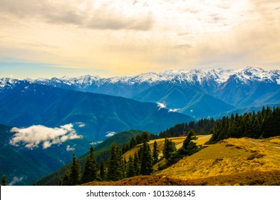 Olympic national park in Washington state in summer summer time is the best time to get to see a beautiful view.