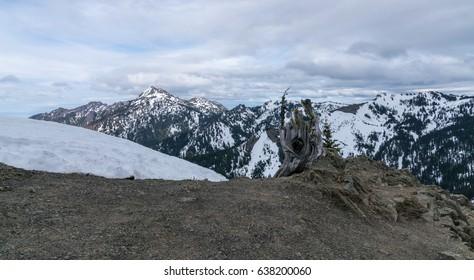 Olympic National Park Washington State, USA