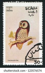 OMAN - CIRCA 1972: stamp printed by Oman, shows Tencmalm Owl, circa 1972