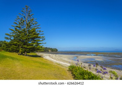 Omana Beach Auckland New Zealand