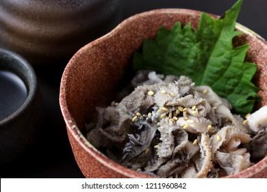 Omasum, Cow's third stomach