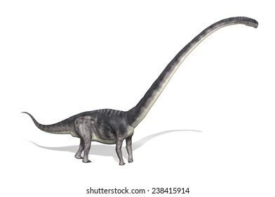 The Omeisaurus was a very large dinosaur that lived during the Jurassic period - 3d render