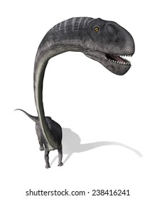 The Omeisaurus was a very large dinosaur that lived during the Jurassic period - as seen from above.