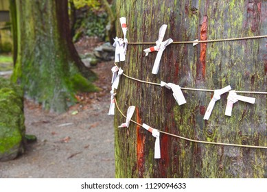 Omikuij Fortune Papers Tied to a String at Tenso Shrine in Yufuin, Japan