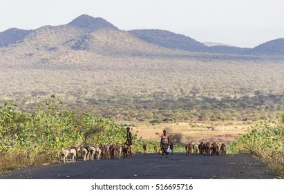OMO VALLEY. ETHIOPIA - JANUARY 2, 2014: Unidentified herders on highway in the evening.