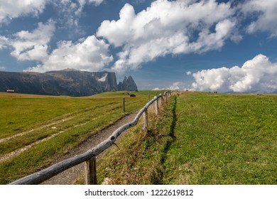 On the Alpe di Siusi in the Dolomites