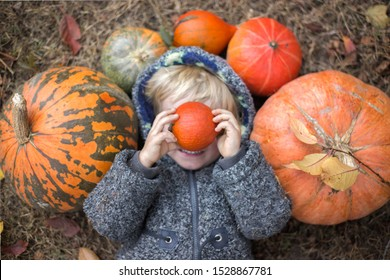 On autumn day, large and small pumpkins lie on the dead grass, in the middle a boy lies in a gray fur jacket, holds a small bright orange pumpkin in front of his face, his smile is visible in defocus