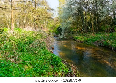 On the banks of the River Leen as it passes through woodland on a spring day.