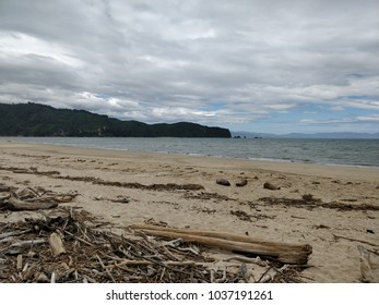 On the beach in Abel Tasman Nationnal Park in New Zealand