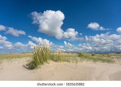 On the beach of Norderney - Shutterstock ID 1835635882