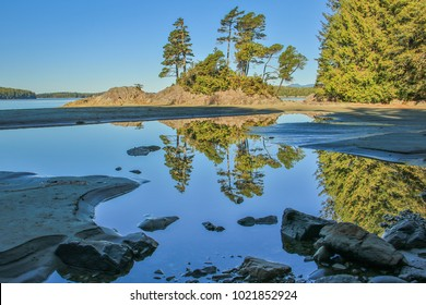 On the beach of Tofino, Vancouver Island, Canada