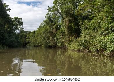On a boat on Daintree River in Daintree Rainforest, Australia