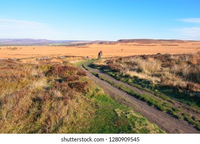 On a bright autumn morning in the Derbyshire Peak district a distant cyclist rides down a winding path.