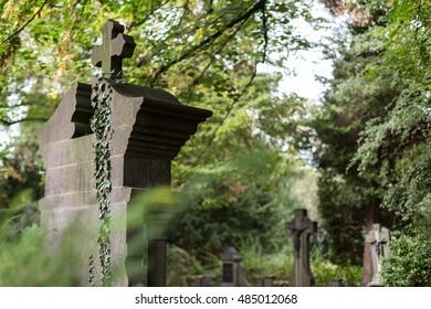 on a cemetery