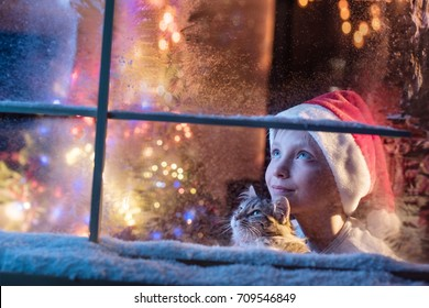 On Christmas night an adorable little boy with a santa hat and his little cat are looking up at the sky through the window. They are waiting for Santa Claus. There is frost and snow on the window