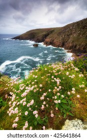 on the coast path to zennor in cornwall england uk.