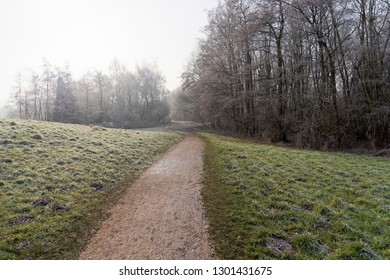 On a cold, misty and frosty morning a footpath winds between grass verges bordered by bare frost laden trees