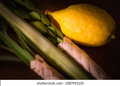 On the festival of Sukkot, Jews take the four species: etrog, willow branches, a palm branch and myrtle branches and bind them together in order to wave them.