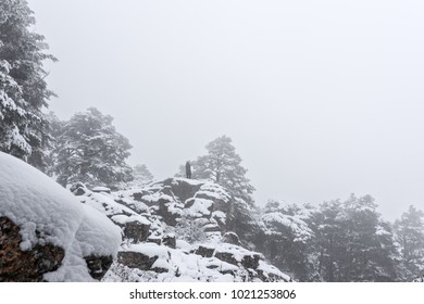 On a foggy winter day a woman stands on the frozen stone and watches the horizon.