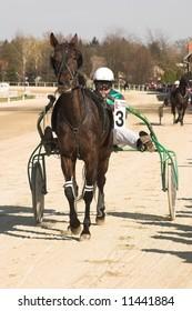 on horse race