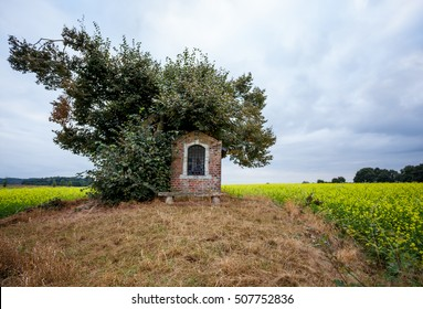 on land with yellow flowers, there is a small chapel
