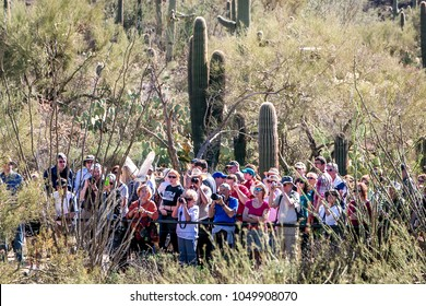 On May 24,2013 at Sonora Desert Museum. Observing a bird show. People are watching and taking photos of a bird.