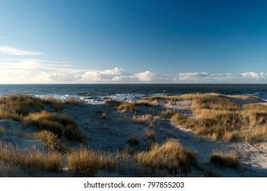On the North Frisian Island Amrum in Germany