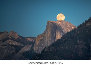 On Nov 14, 2016, Supermoon, super sized moon, rise over the Half Dome in Yosemite National Park