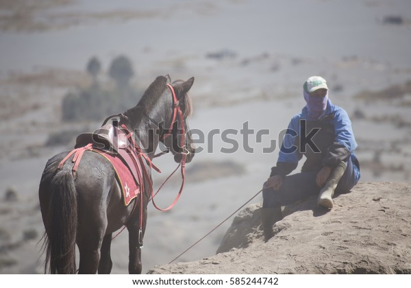 On Oct 24, 2015 : Stableboy at Mount Bromo, It's an active volcano famous for beautiful view. At Mount Bromo, Surabaya, Indonesia.