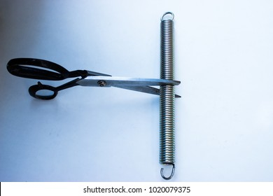 On the picture are  the cissors to cut a steel spring.