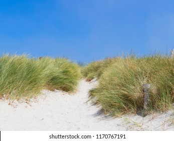 On Plage Sainte-Marguerite, Landeda, France, a the top of the beach a narrow path leads off the beach between lush seagrass
