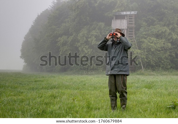 On a rainy day a hunter stands in front of the hunting pulpit in the meadow and looks through his binoculars.