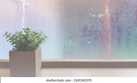 On a rainy day, see the water drops on the outside mirror blurred. (a rainy day window background) Place the flowerpot on the wooden floor on the left. Feelings, sadness, loneliness, nostalgia.