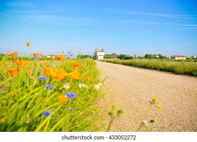 On the road to Pomerol, France