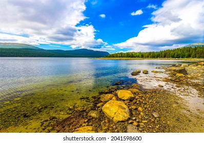 On the shore of a calm forest lake. Lakeshore landscape. Forest lake in mountains. Lake view