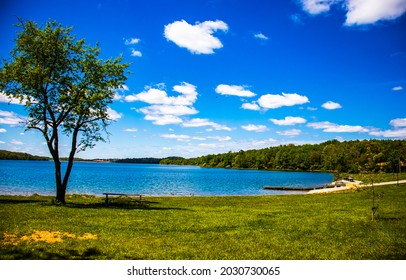 On the shore of a forest lake. Lake beach panorama. Forest lake beach view. Summer lake shore