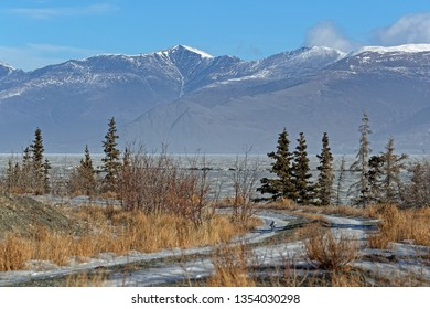 On the shore of Kluane Lake, Kluane National Park, Yukon