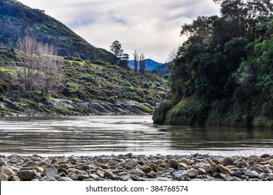 On the shore of the river in the Whanganui National Park, North Island of New Zealand
