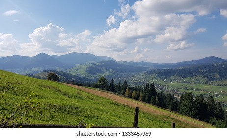 On the slope of the Carpathian Mountains