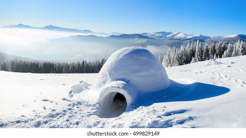 On the snow-covered meadow in the mountains stands a solitary igloo, to which there lead a big trampled trail and many traces on a winter day.