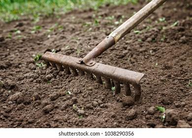 On the soil lie the garden rake. Close-up, Concept of gardening.